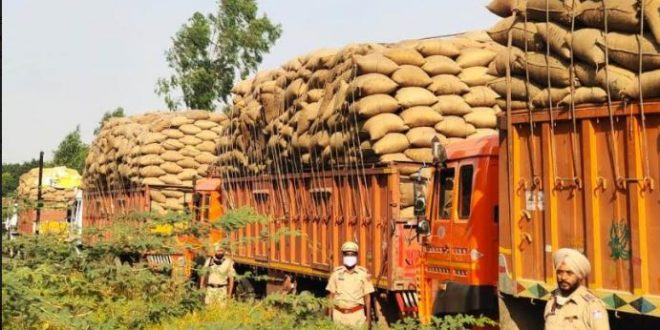 PATIALA POLICE REGISTERS CRIMINAL CASES AGAINST ILLEGAL INFLOW OF PADDY FROM OTHER STATES