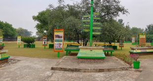 MUSEUM OF TREES – NEW ENVIRONMENTAL LANDMARK OF CHANDIGARH